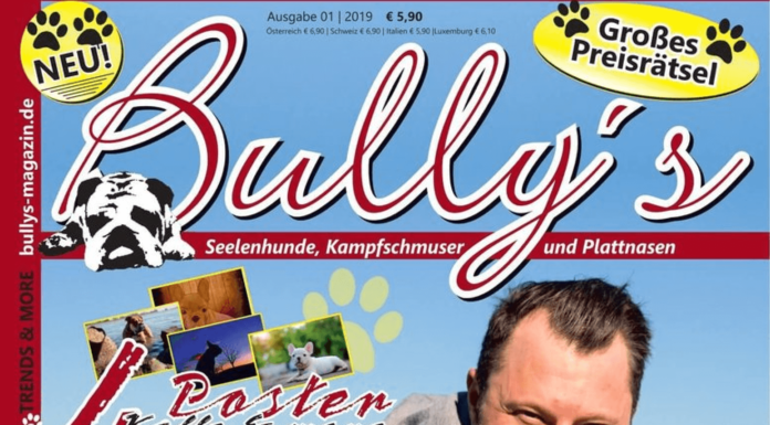 Bully's - Preview