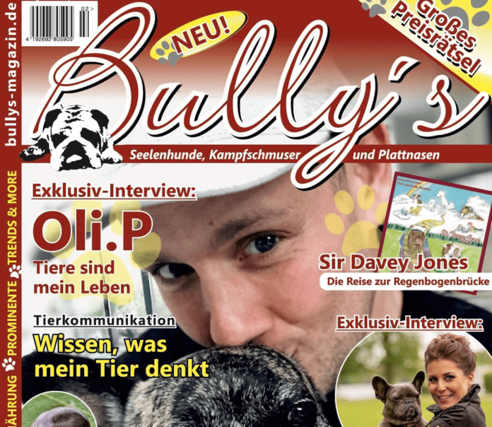 Bully's #2 - Preview