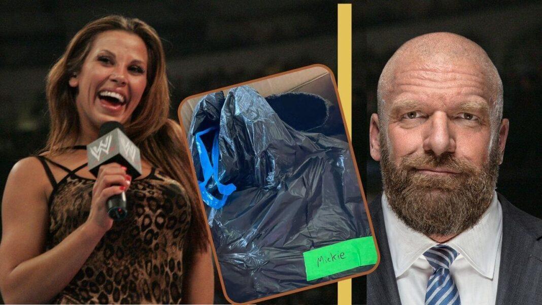 WWE-Müllsack-Skandal: Mickie James (Foto: Power-Wrestling), Triple H (Foto: WWE 2021. All Rights Reserved.), Müllsack (https://twitter.com/MickieJames)